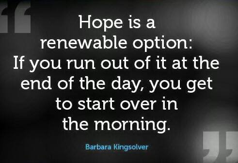 quote-hope-is-a-renewable-option-by-barbara-kingsolver6645041675340763571.jpg